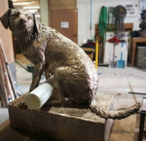 Judy Boyt's full-sized Labrador
