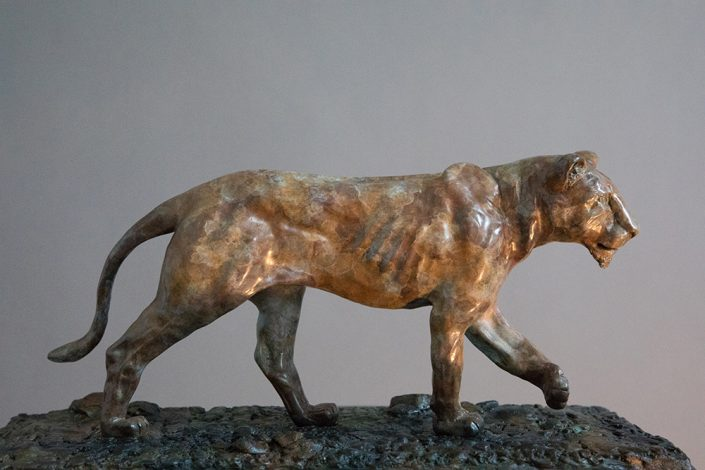 Lioness in Bronze - Adrian Flanagan