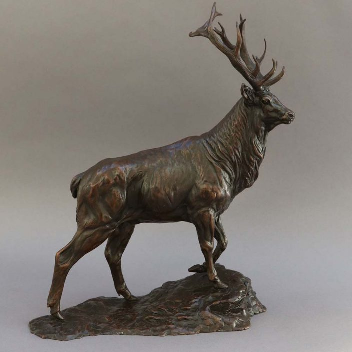 Stag - William Montgomery