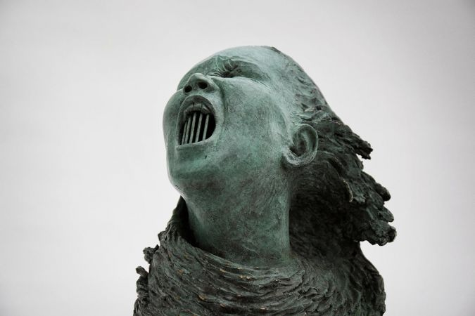 The Silent Scream - Anita Toscani